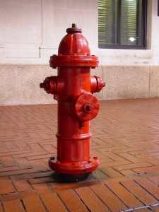 downtown_charlottesville_fire_hydrant